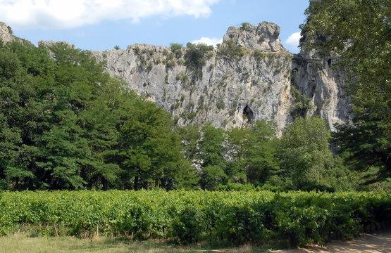 Montagne de l'Ardèche et vignes, Ardèche, France