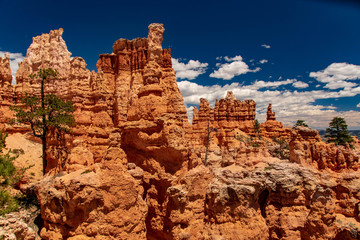 Hoodoos of the Fairy Castle from the Peekaboo Trail, Bryce Canyon National Park