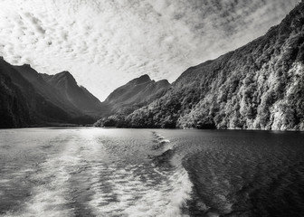 Morning Cruise at Doubtful Sound in black and white -Fiordland National Park, New Zealand,