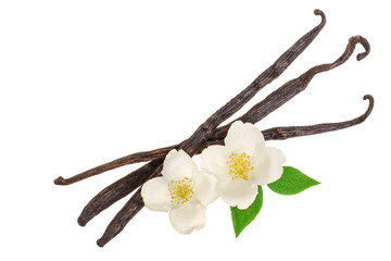 Vanilla sticks with flower and leaf isolated on white background. Top view. Flat lay