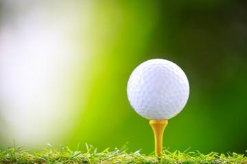 緑背景のゴルフボールとティー