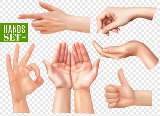 Realistic Hands Set Transparent
