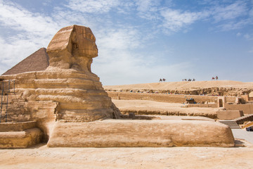 The Great Sphinx of Giza closeup from the side with camels in the background.