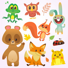 Cartoon forest animal characters. Vector illustration. Big set of cartoon woodland animals illustration. c. Isolated