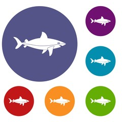Shark fish icons set in flat circle red, blue and green color for web