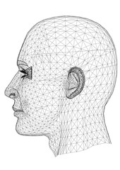 Man Head Architect Blueprint - isolated