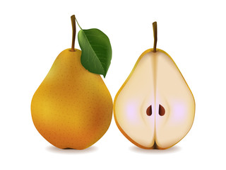 delicious juicy yellow pears with leaves on a white background. Realistic style. Vector illustration.