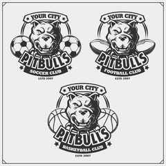 Basketball, soccer and football logos and labels. Sport club emblems with pitbull.