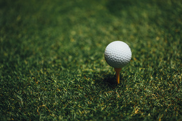 golf ball on yellow tee on green grass, closeup view