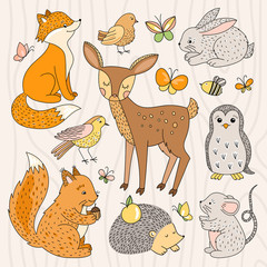 Funny forest animals illustrations. Cute wild life animals and birds