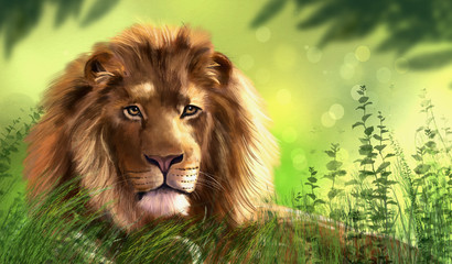 Illustration of lion. Digital painting.