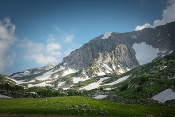 Caucasian mountains with glaciers and green glades