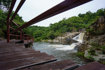 Paved walkway above tropical stream