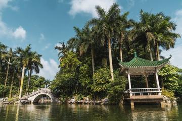 Stone oriental bridge on tropical park