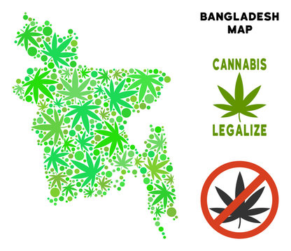 Royalty free cannabis Bangladesh map composition of weed leaves. Template for narcotic addiction campaign against drugs dependence or cannabis legalize.