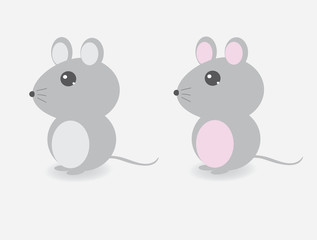 Cute mouse, female mouse, male mouse, mouse animal illustration