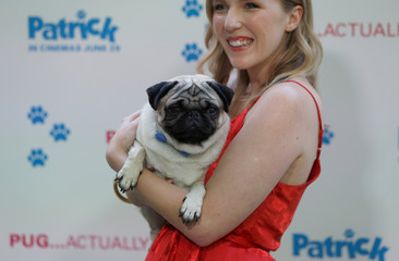 """Actor Beattie Edmondson poses for photographs with her co-star, a Pug dog called Harley, at the premiere of the film """"Patrick"""" in London"""