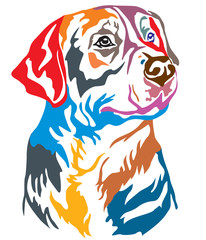 Colorful decorative portrait of Greater Swiss Mountain Dog vector illustration