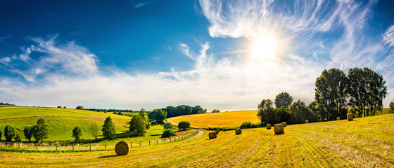 Fototapeten Honig Landscape in summer with bright sun, meadows and golden cornfield in the background
