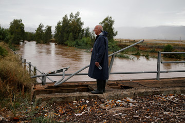 A man watches the rising water level of a stream, following flash floods which hit the town of Magoula