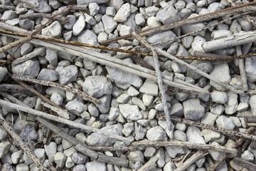 Many dry reed stalks lie on gravel