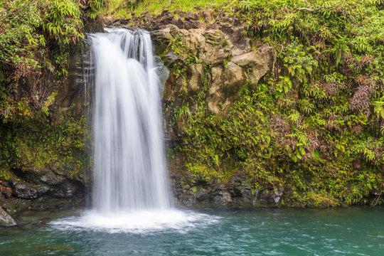 Scenic Tropical Maui Waterfall