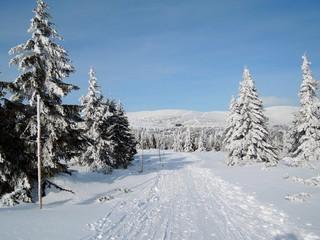 Winter Krkonose - Luční bouda