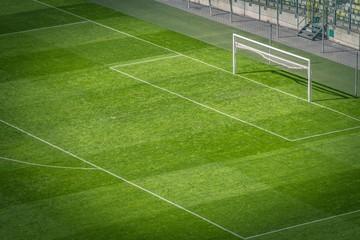 Football Pitch Closeup
