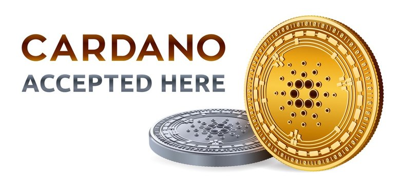 Cardano. Accepted sign emblem. Crypto currency. Golden and silver coins with Cardano symbol isolated on white background. 3D isometric Physical coins with text Accepted Here. Vector illustration.