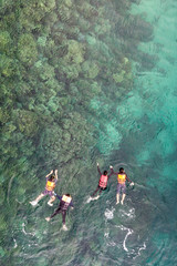 Group of tourists are swimming in blue sea. Snorkeling in full-face snorkeling mask. Coral reef in shallow sea. Snorkel undersea. Seashore underwater photo. Active seaside vacation.