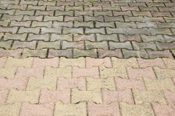 Dirty pavement with dense moss requiring cleaning before and after