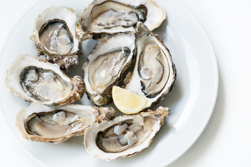 Fresh oysters. Raw fresh oysters are on white round plate, image isolated, with soft focus. Restaurant delicacy. Fresh raw oysters.