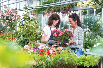Freundliche Gärtnerin berät eine Kundin im Gewächshaus beim Blumenkauf