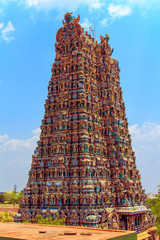 Fotomurales - The famous temple of Meenakshi.