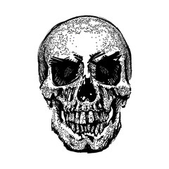 Skull image in grunge. Vector art. Street style. Symbol of death. Monochrome style. Isolated on white background. Particle divergent composition. Vector Illustration.