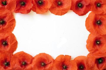 Borders and Frames Made out of Poppies on White Background