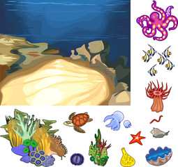 Educational game: assembling Ecosystem of coral reef from ready-made components in form of stickers