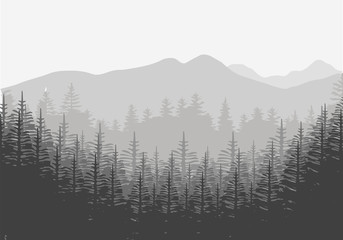 forest tree greay background