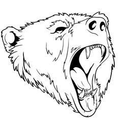 head black bear sketch