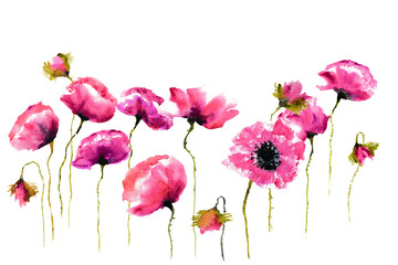 Stylized poppies on white background, floral art, watercolor illustrator, hand painted
