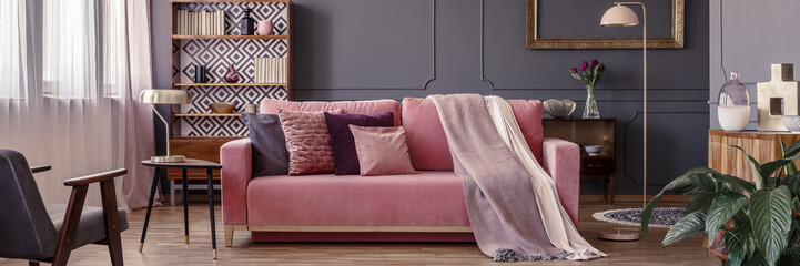 Powder pink velvet couch with decorative pillows and two blankets standing in dark sitting room interior with molding on the wall and books on retro cupboard