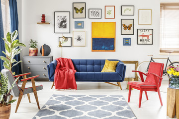 Patterned carpet in colorful living room interior with red armchair and navy blue settee. Real photo