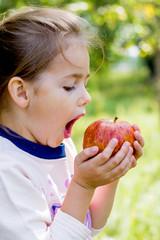 summer little girl holding an apple