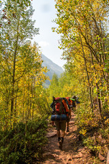 Backpackers in the Maroon Bells