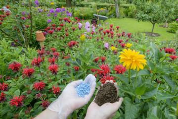 Dünger für den Garten -links Blaukorn - rechts Kompost