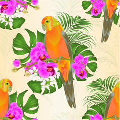 Seamless texture Sun Conure Parrot tropical bird standing on a purple orchid  Phalaenopsis and palm, phiodendron background vector illustration editable hand draw