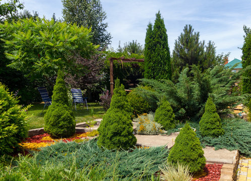 Summer backyard design