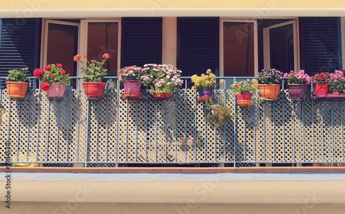 Potted spring flowers on a sunny balcony in the city balcony potted spring flowers on a sunny balcony in the city balcony decoration mightylinksfo