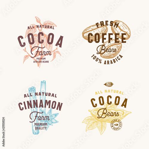 Cinnamon anise spices cocoa and coffee abstract vector sign cinnamon anise spices cocoa and coffee abstract vector sign symbol or logo templates maxwellsz
