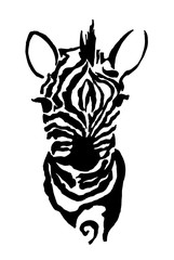 Black and white illustration of a zebra. Drawing by hand